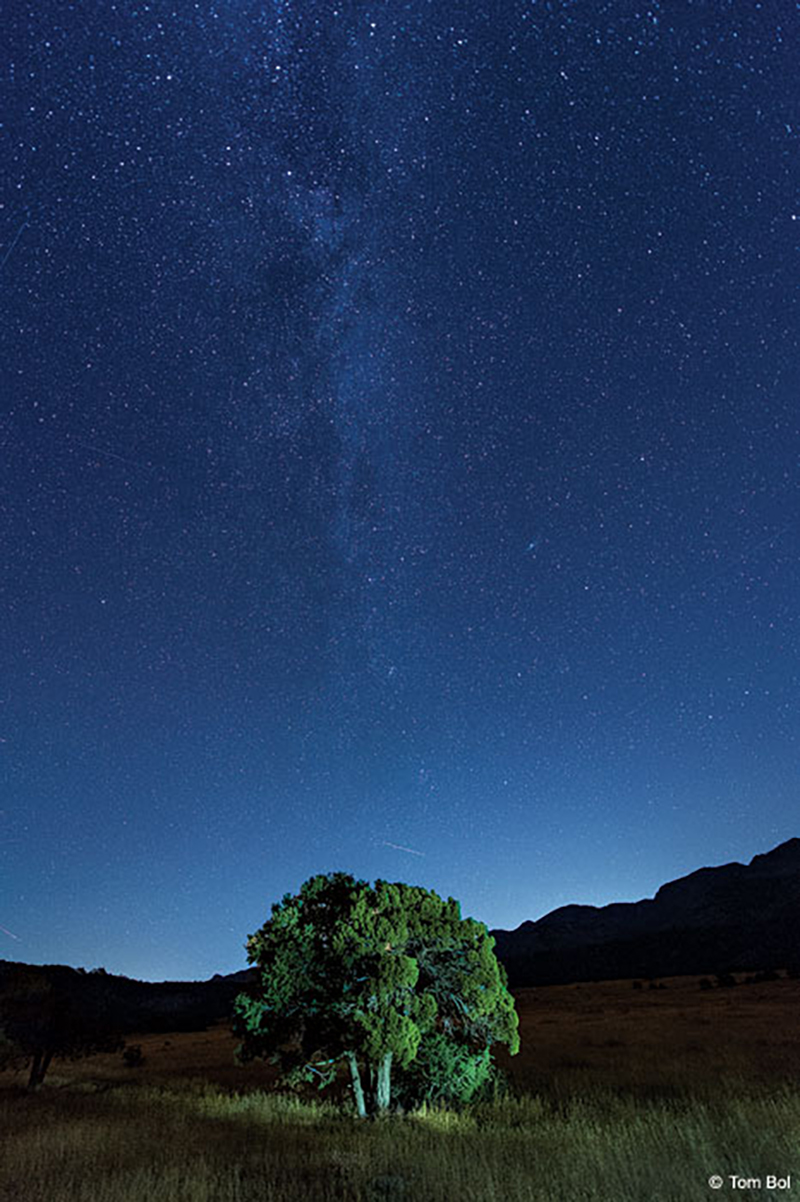image of a landscape with starry sky