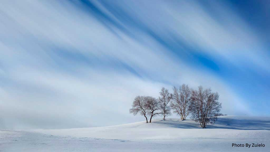Dreamy Winter by Zuielo