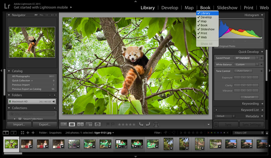 eliminate extra Lightroom modules
