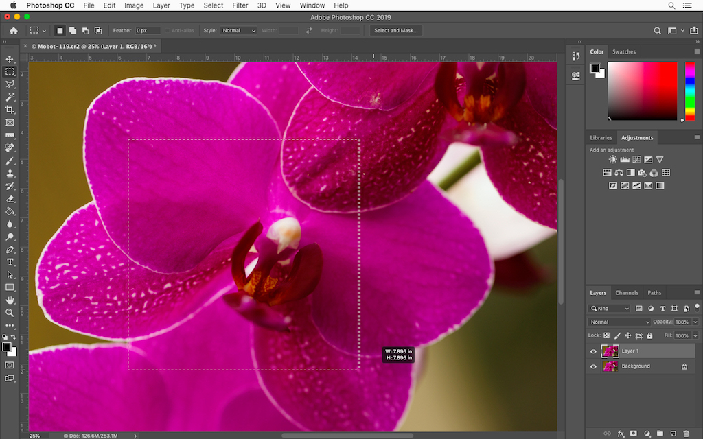 Five Photoshop Hidden Gems