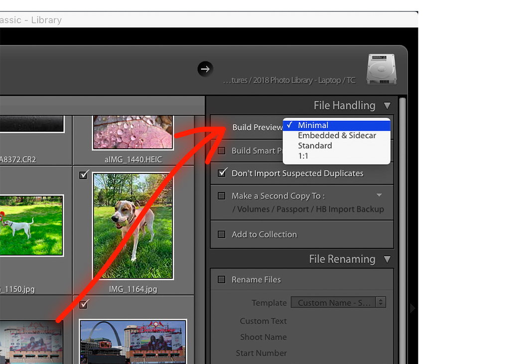 Optimize Lightroom For Sorting, Rating And Editing