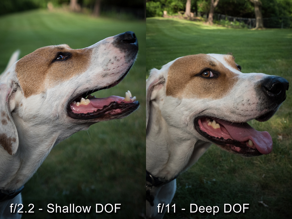 All About Depth Of Field