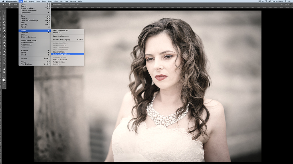 Custom LUTs In Photoshop And Lightroom