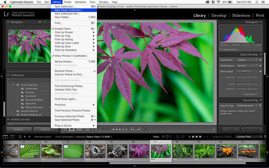 Understanding Smart Collections In Lightroom