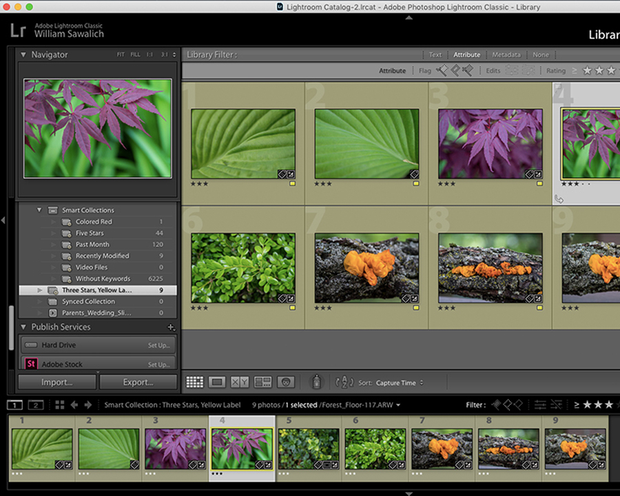 Understanding Lightroom Smart Collections