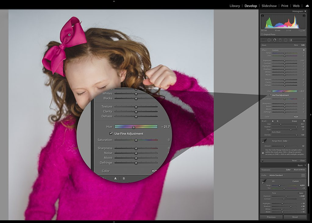 Using Lightroom's New Local Hue Adjustment