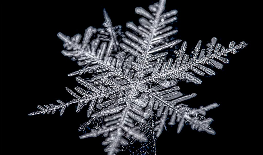 Friday Fun: Watch This Amazing Macro Photography Video of Melting Snowflakes in Reverse