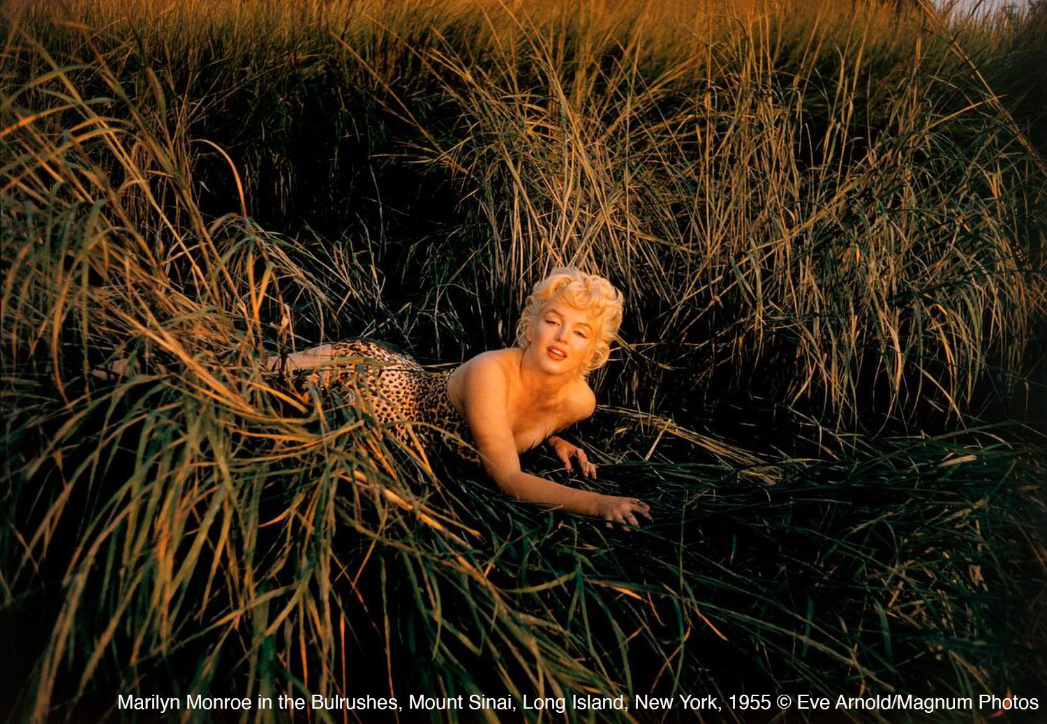 Photo by Eve Arnold of Marilyn Monroe