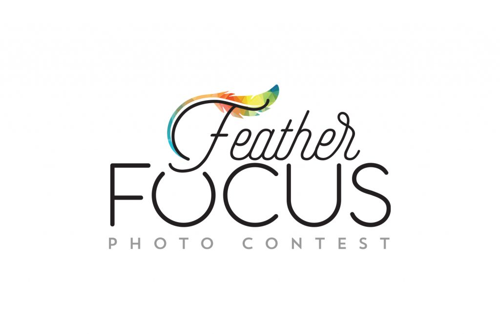 Feather Focus Contest Finalists