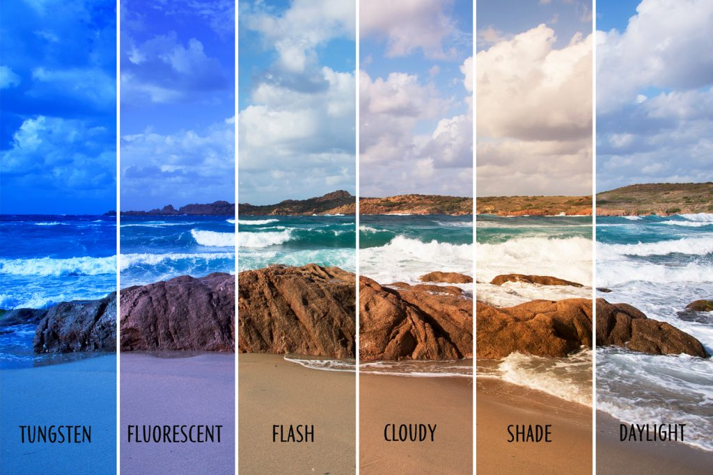 What Is White Balance on Your Camera?