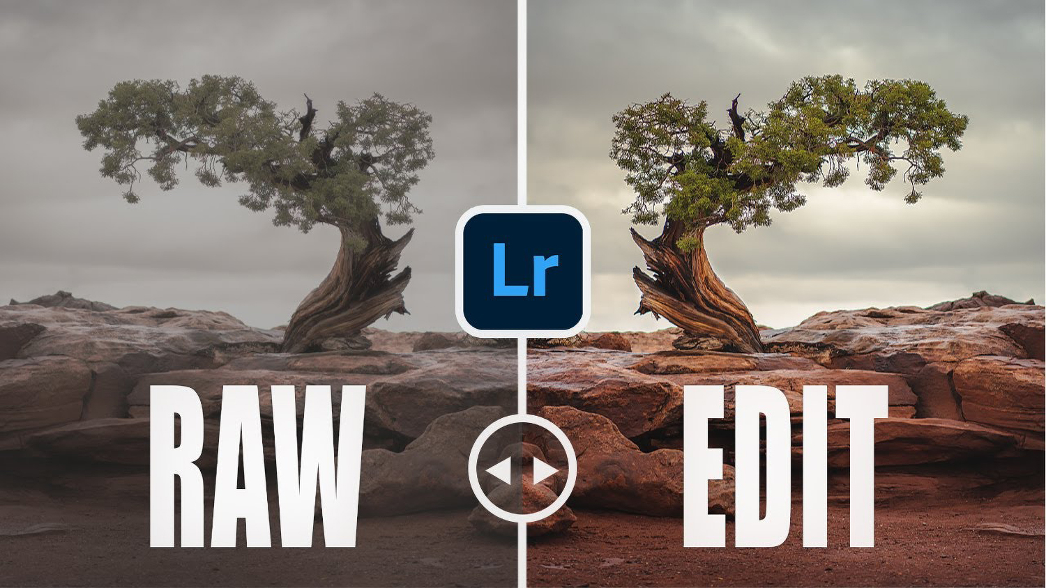 Photo of landscape editing mistakers