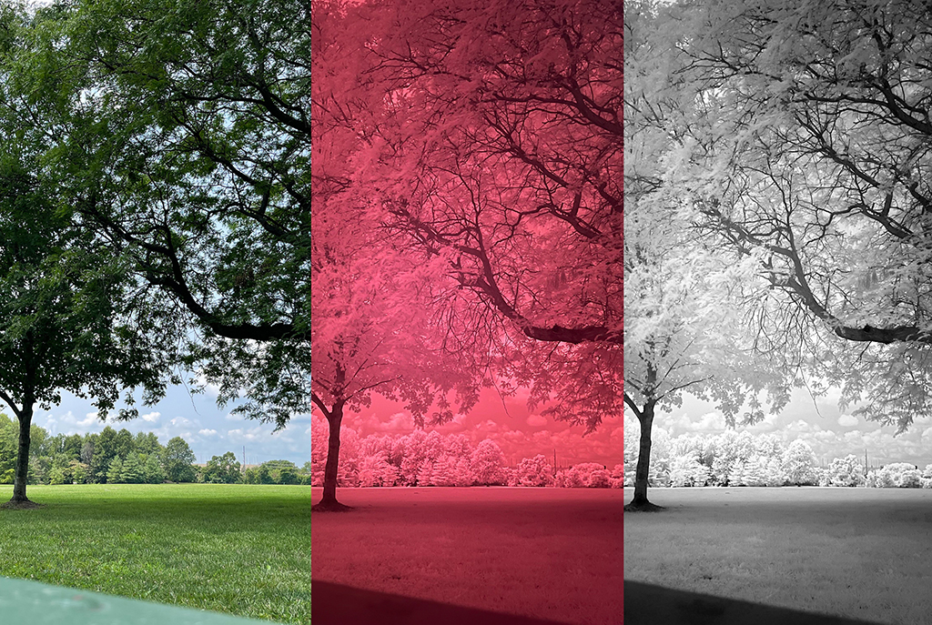 Infrared Photography With An iPhone