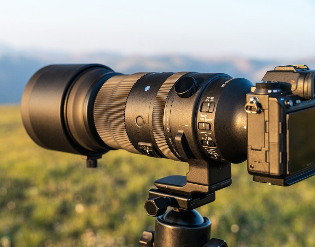 Sigma 150-600mm F/5-6.3 DG DN OS Hands-On Review