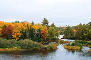 Lower Tahquamenon Falls in Fall