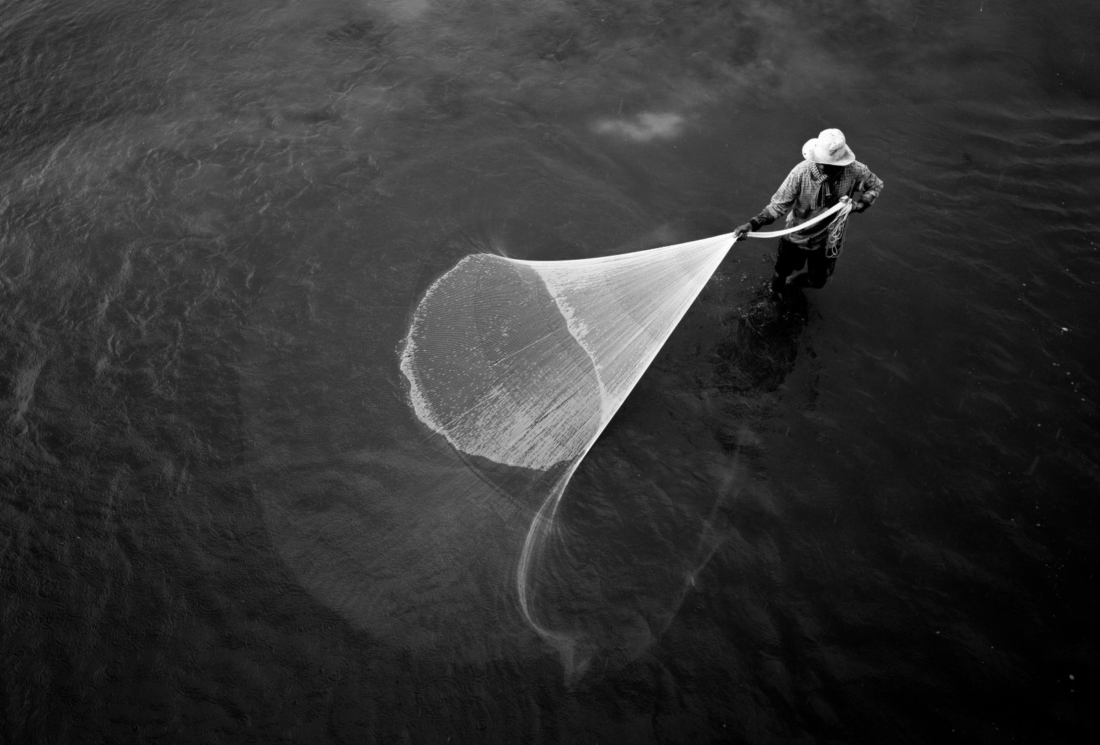Nets Of The Life